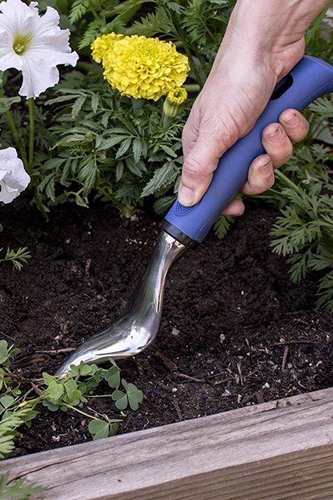 15 strumenti unici che ogni proprietario di un giardino ha for Trasforma un semplice terreno in un colorato giardino